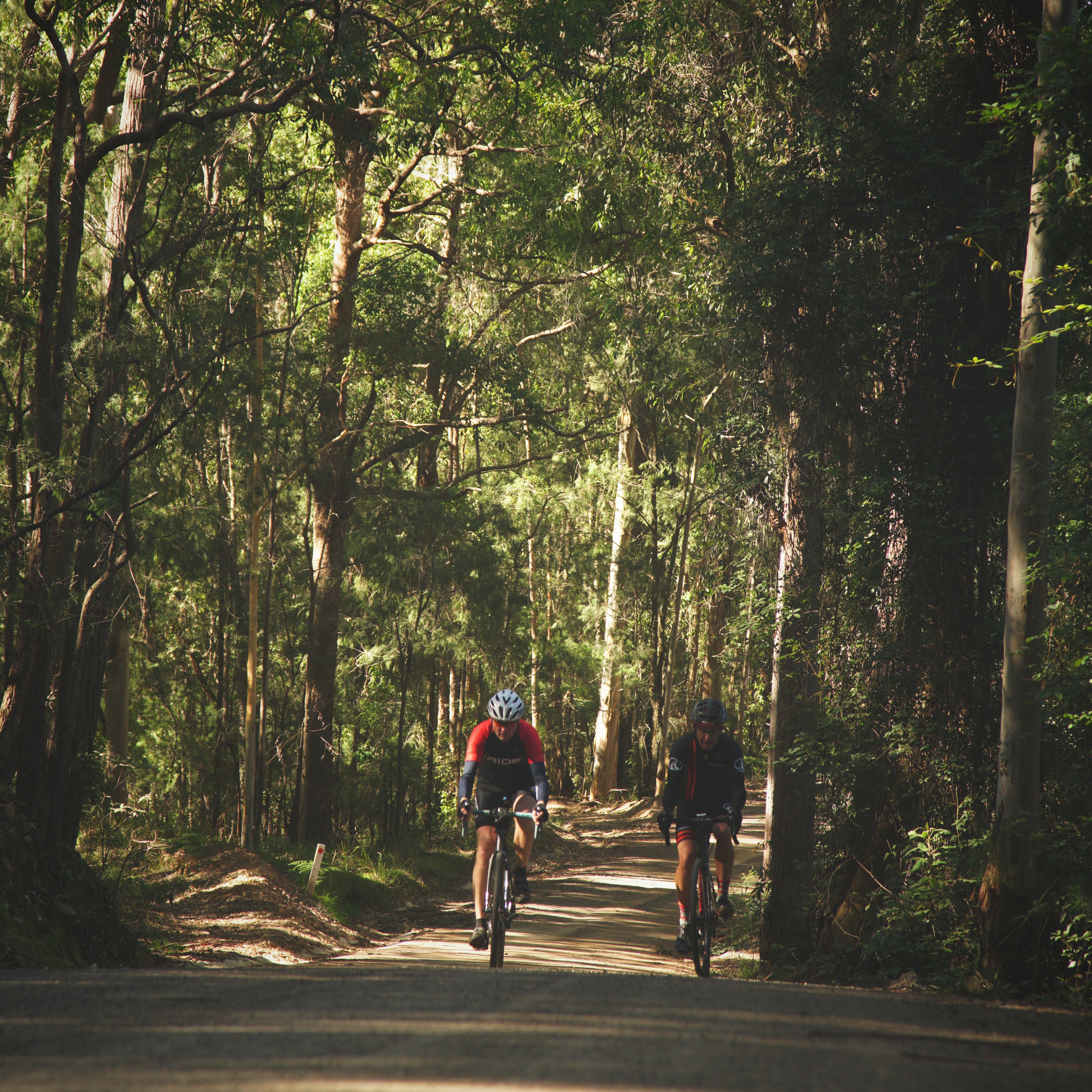 Cycling Cedar Brush Creek - Yarramalong